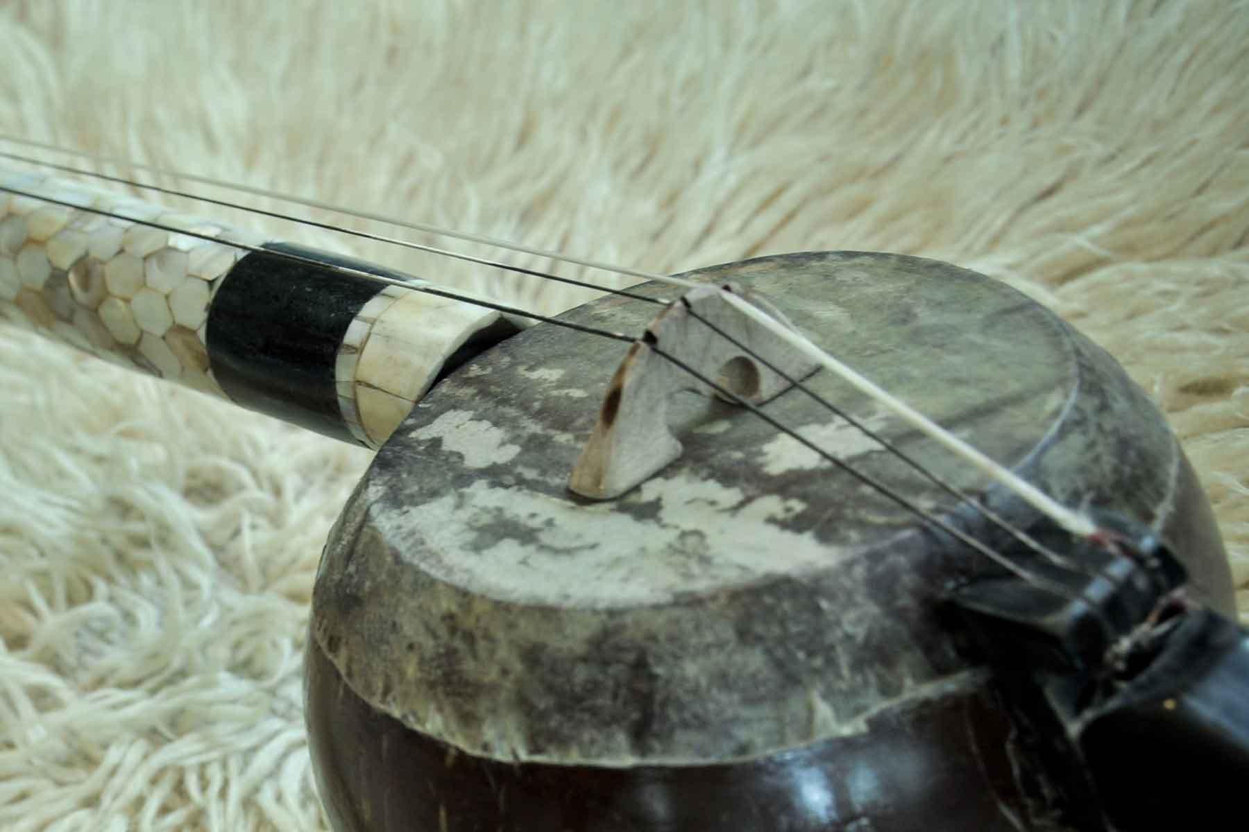 Rebab enstrümanından gövde detayı